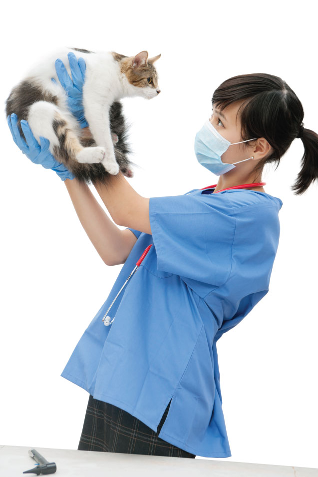 pet-health-app