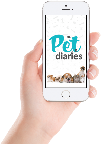 Pet Diaries Palm of your hand
